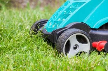 Rasenmäher: Akku, Benzin oder Elektro?