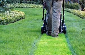 Die 5 häufigsten Fehler beim Rasenmähen